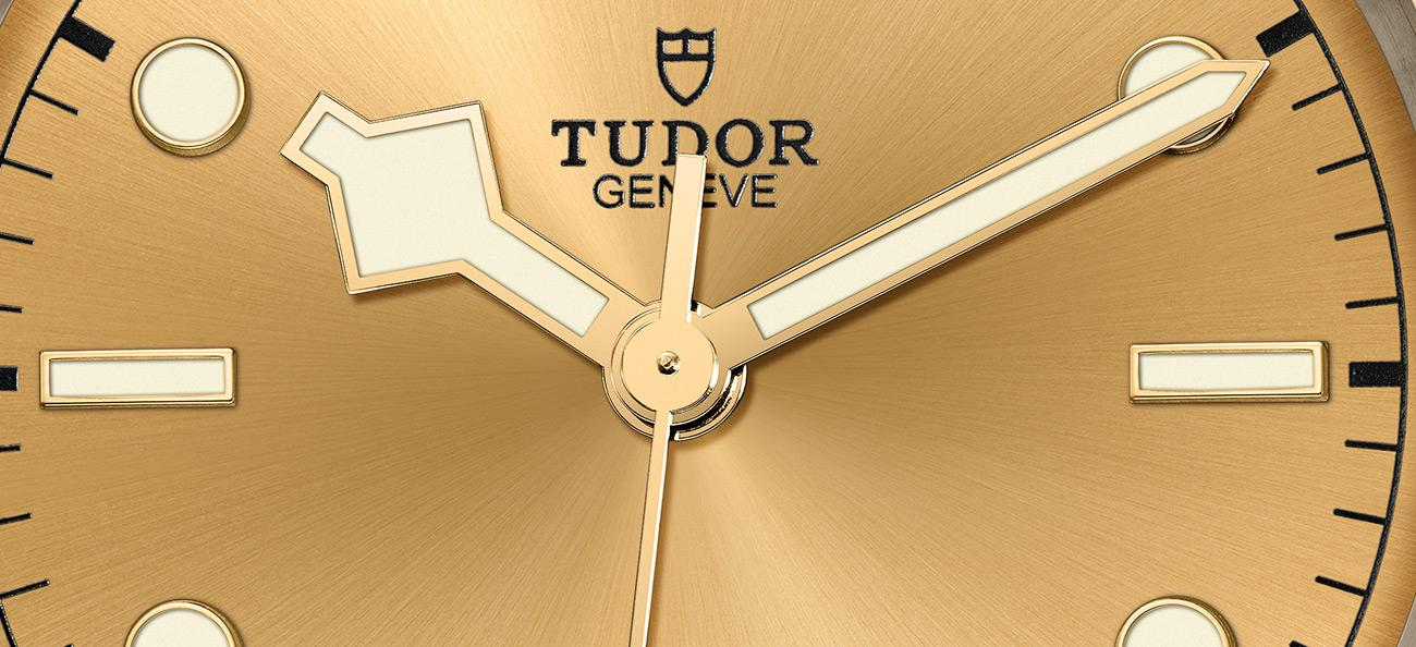 Tudor Black Bay 41 S&G Ref. 79543